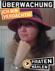 Piratisierer1375877387