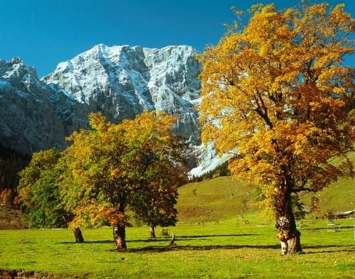 © Österreich Werbung / Ascher   Bildtext:  Ahornboden im Karwendel / Im Herbst / Tirol