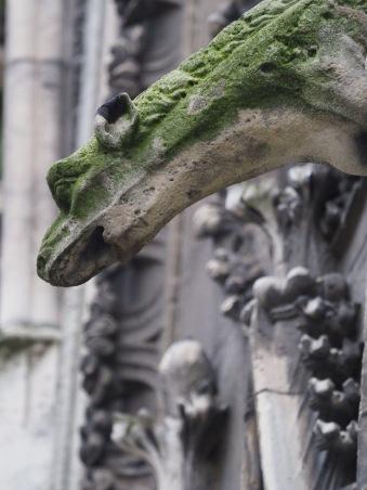Wasserspeier Notre Dame Foto: Michaela Burch