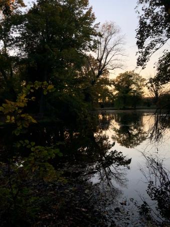 Der Teich im Schloßgarten