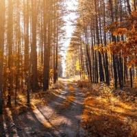 Friede, Freude, Eierstöcke - Reden über die Wechseljahre