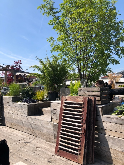 Der Dachgarten auf dem Alpina-Parkhaus