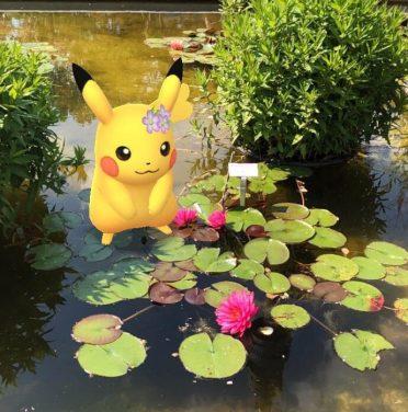 Ein Pikachu sitzt im Seerosenteich - dank Augmented Reality